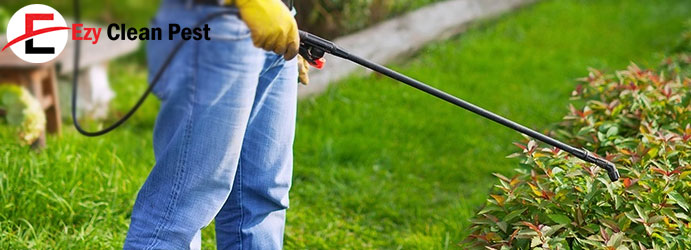 Pest Control Treatments Canberra
