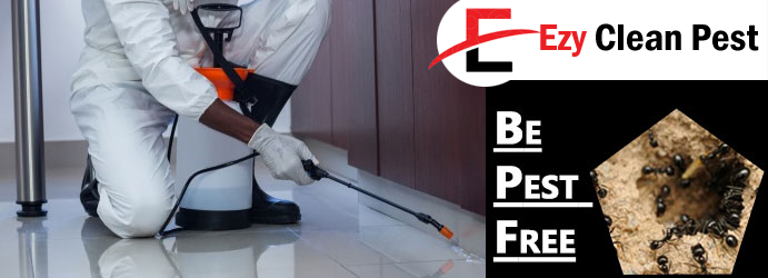 Pest Control Jones Hill