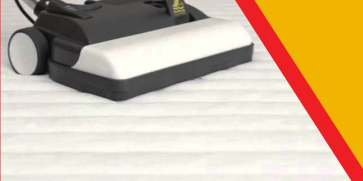 What is The Best Way to Remove Bed Bugs from your Home